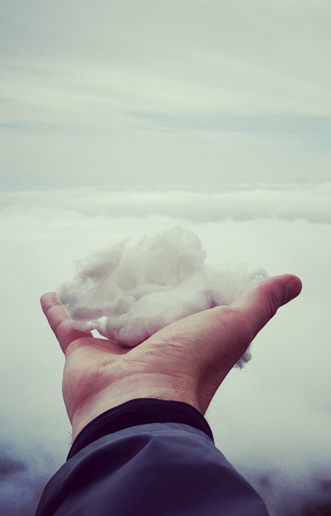 Cloud Developer Trends