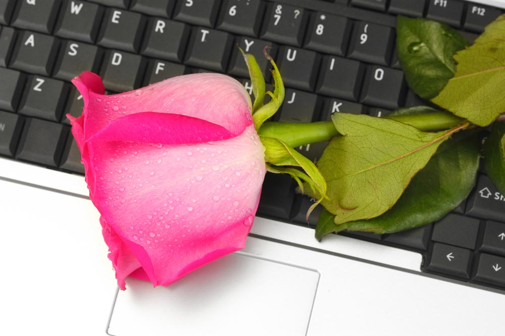 rose on laptop keyboard to illustrate how to advertise to developers